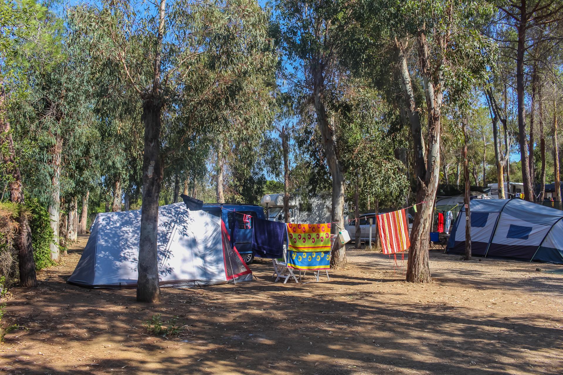 mobilheim elba mit hund insel elba camping village stella