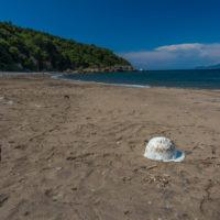 Strand von Fornacelle