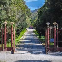 Villa Demidoff